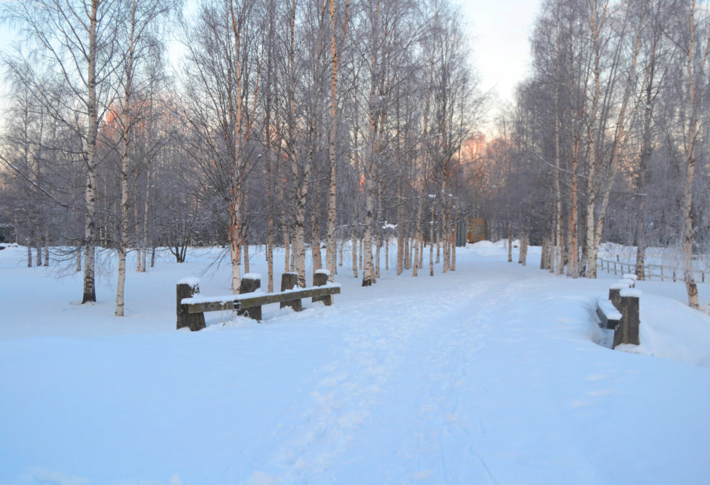 En del av Österbottens strandväg i Kemi på vintern.