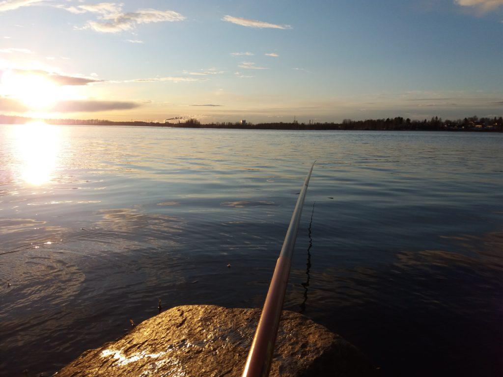 Merimaisema, lähimpänä ongenvapa ja kivi, taustalla meri ja rantaa.