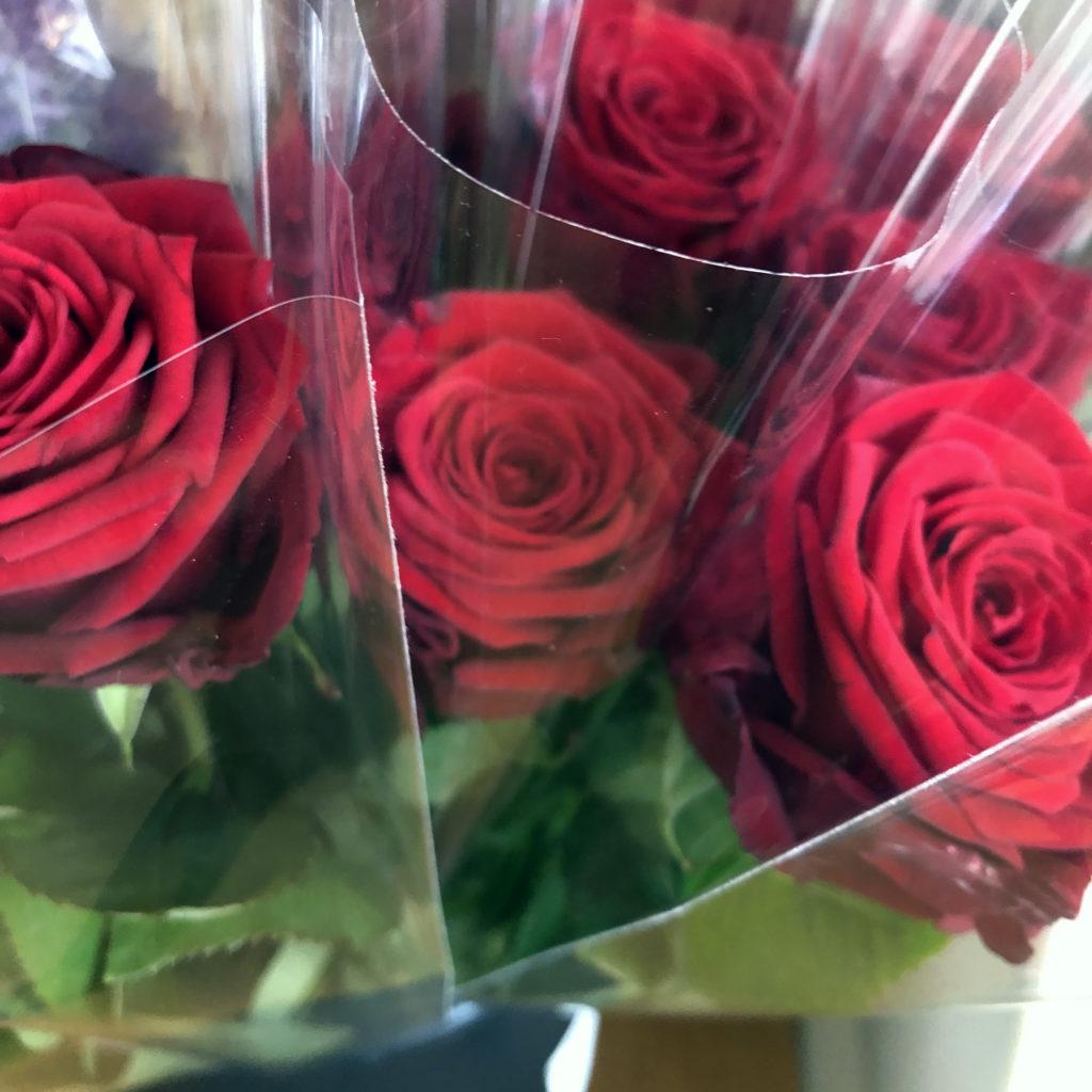 Punaisia ruusuja lähikuvassa.