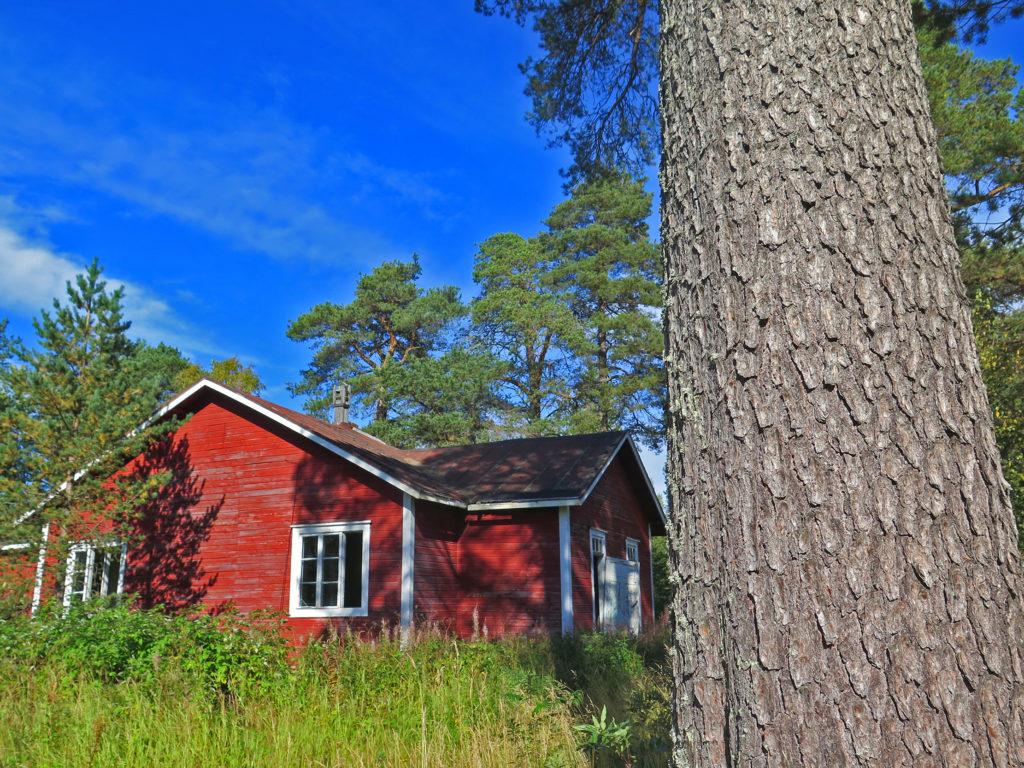 Vanha punainen puutalo entisellä uittoalueella.