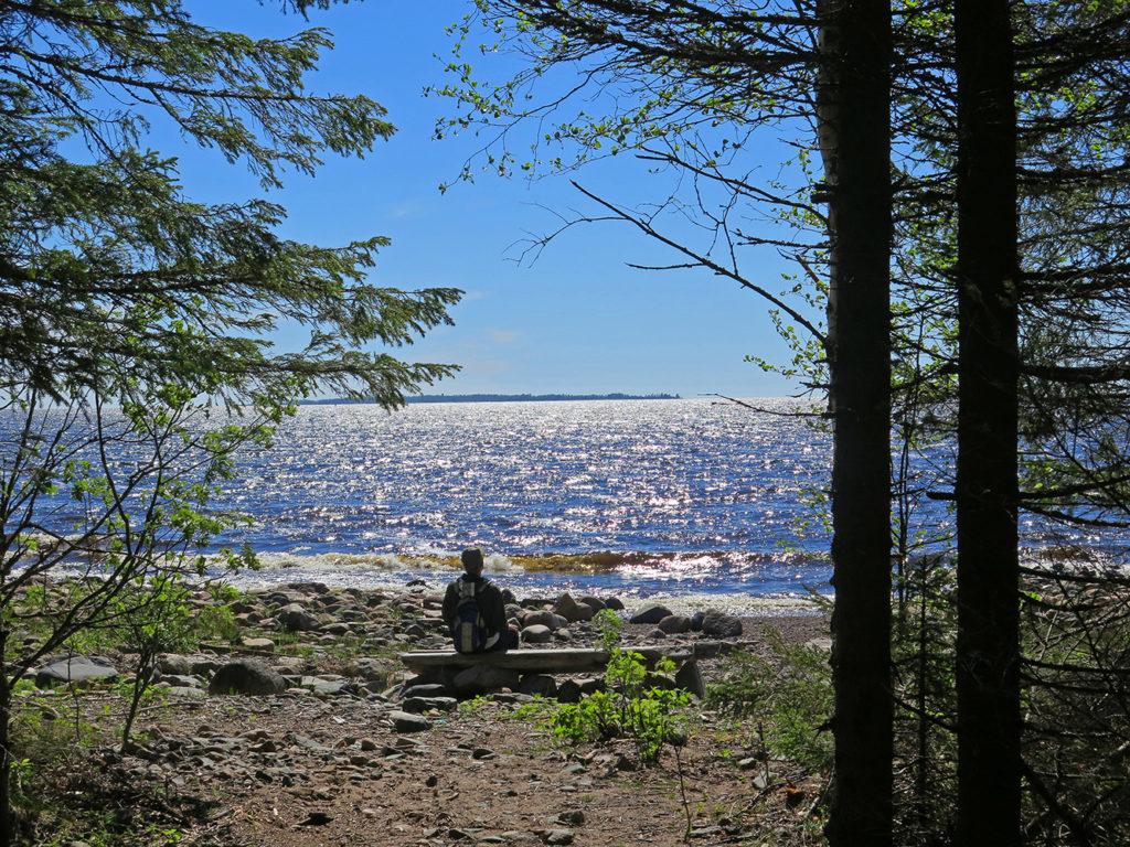 Mies istuu pölkyllä meren rannalla Satamakankaan rantametsässä. Kuvaaja: Pentti Korpela
