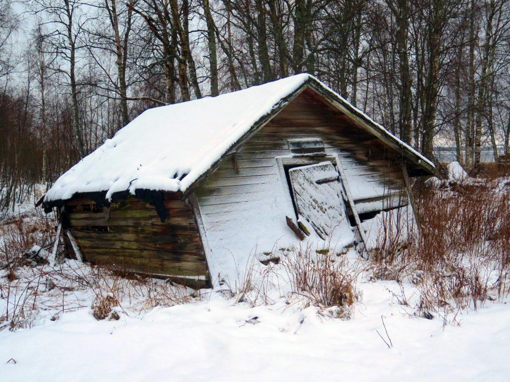 Ränsistynyt, kohta kai kaatuva vanha lato Paavonkarissa talvisessa rantamaisemassa.